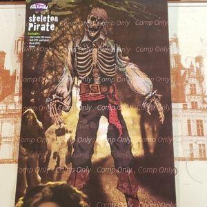 Skeleton Pirate Costume